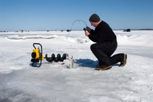 Ice fisherman reeling up a whitefish through a hole in the ice